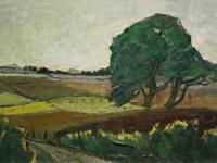 098 Die Harfenkiefer, 1955, 43 x 68 cm