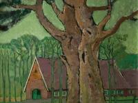 083 Alte Kiefern, 1978, 43 x 40 cm