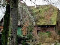 Münsterländisches Bauernhaus 2012 (Foto:A.Leu)