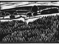 Landschaft bei Holtwick