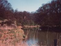 Foto: Lippelandschaft