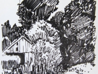 Buschwald bei Dülmen Coesfeld, 24.06.70