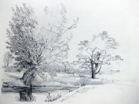 Bäume am Bach, o.J.