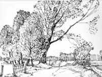 Landschaft bei Rees, 24.10.1970