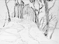 Waldweg bei Ahsen, 23.04.1968