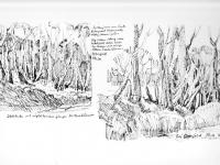 Landschaftsskizzen mit Farbangaben, o.J.
