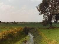 Landschaft der Umgebung