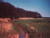 Weg, Foto: Hermann Moog